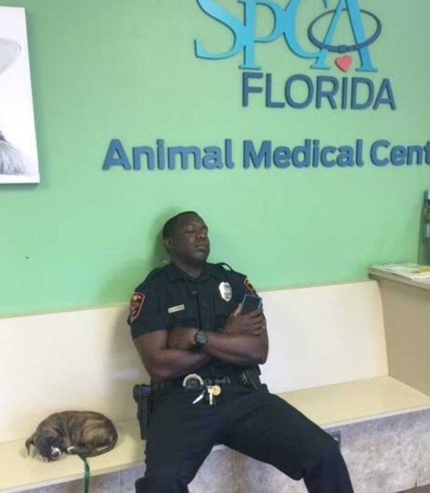 cane salvato da poliziotto