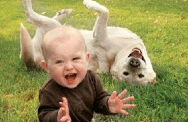 Bambini con cane soffrono meno di ansia