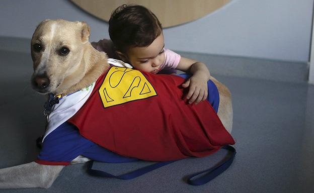 Il tuo cane è super?