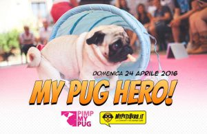 my pug hero 2016