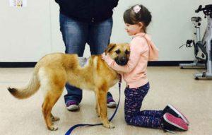 bambina aiuta cane