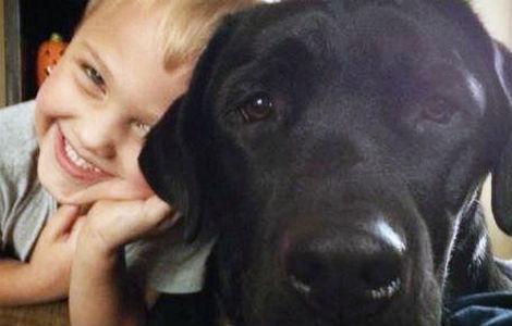 cane salva bambino diabetico