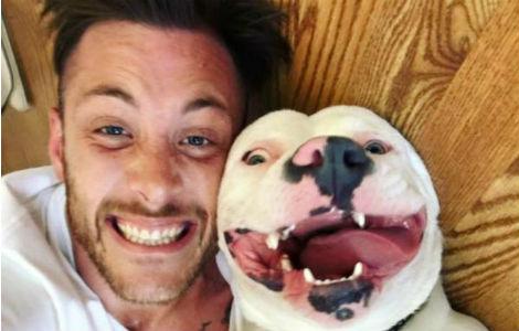 cane rischia di essere separato dal suo amico