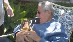 papà abbraccia cucciolo di bulldog