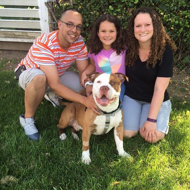 La nuova famiglia del cane Max