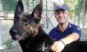 cane eroe salva cane dopo terremoto
