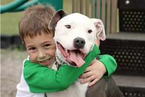 cane eroe salva bambino