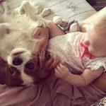 Bambini e cani: crescere insieme per vivere meglio