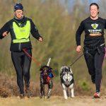 Sport con il cane: quali sono? Conoscere e scoprire per praticare al meglio!