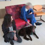 Pet Therapy: aiutare l'altro attraverso la relazione uomo-animale