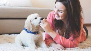 DogBuddy: Dog sitter speciali per i nostri Super Cani